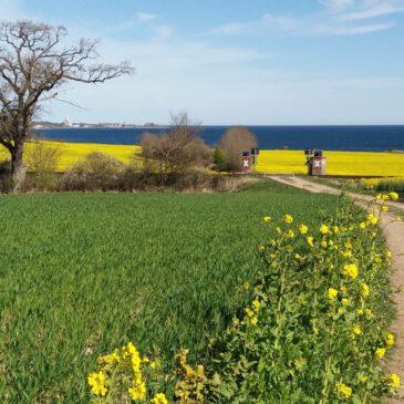 Wandern und Radfahren in der Holsteinischen Schweiz und an der Lübecker Bucht